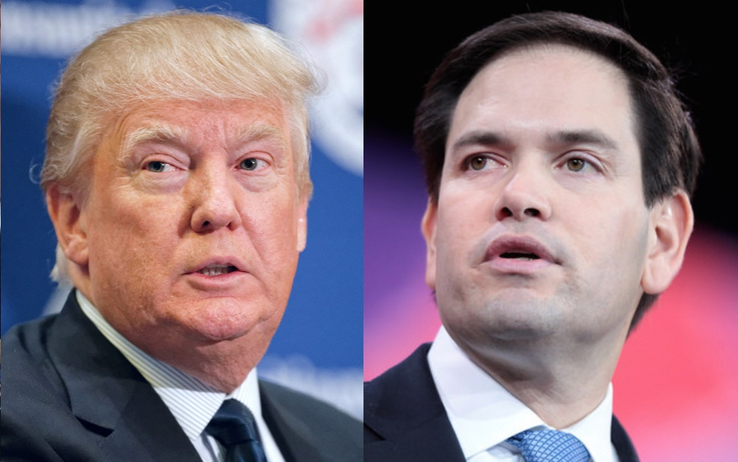 Marco Rubio gets shredded after he tries to stick up for Donald Trump
