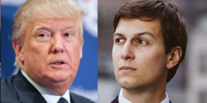 jared-kushner-trum